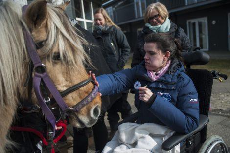 Handicapvenlige aktiviteter på Feriecenter Slettestrand
